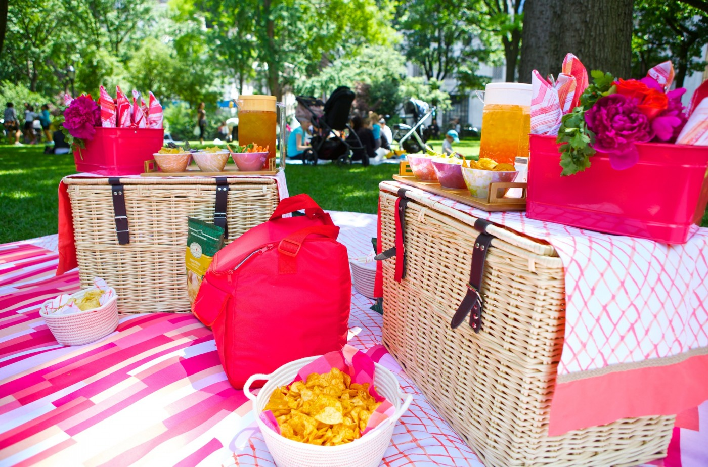 Picnic Blanket Set Up