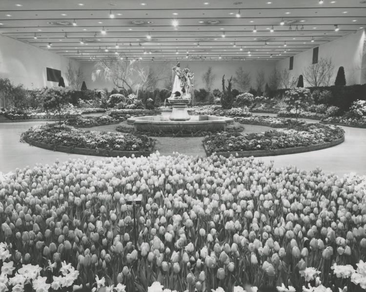 Dayton's Flower Show