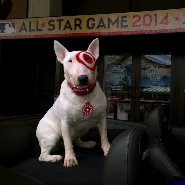 Target s beloved bullseye mascot shares photos from mlb What kind of dog is the target mascot